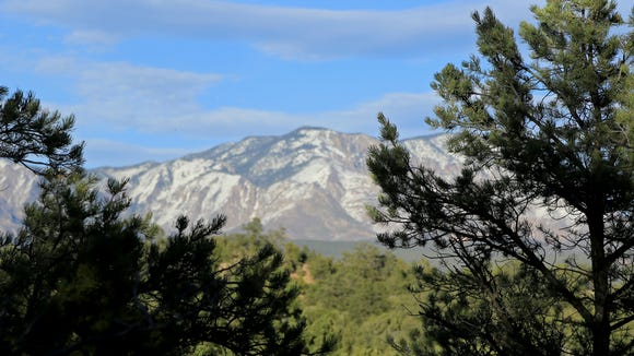 The Pine Valley Mountains can be seen through the trees along the northern end of the Red Mountain Trail.