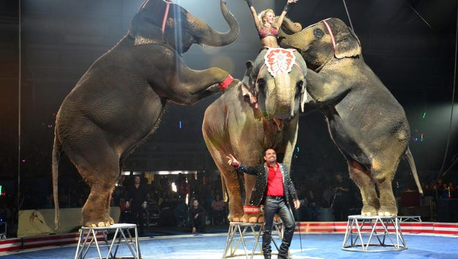 Animals, acrobats, clowns and more are part of the Shrine Circus coming to Great Falls this weekend.