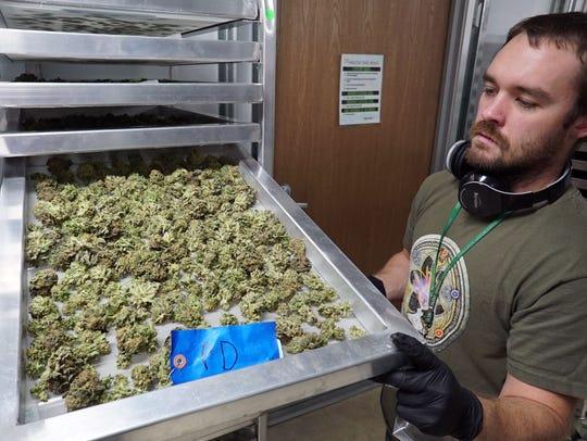 Eric Benevento of Medicine Man marijuana dispensary
