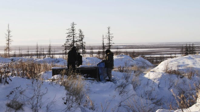 In this Oct. 27, 2010 file photo, Russian scientists Sergey Zimov and his son Nikita Zimov extract air samples from frozen soil near the town of Chersky in Siberia 4,000 miles east of Moscow, Russia. Scientists say the world's permafrost is getting warmer.