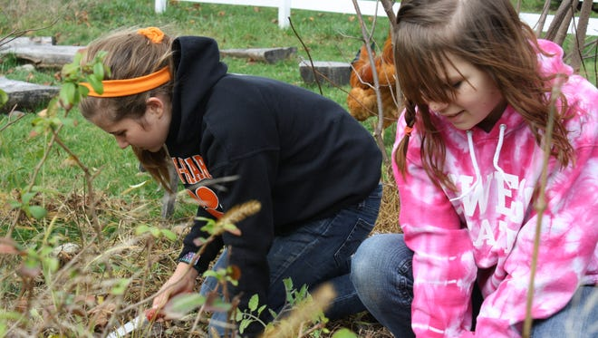 """Anya Jillson-Neuwirth of Croton and Maeve McGee of Putnam Valley, students at the Something Good in the World school at Hilltop Hanover Farm in Yorktown, planted daffodil bulbs Oct. 28, 2010, to beautify the Children's Peaceful Garden there as part of an annual """"plant-a-thon"""" to raise money for programs."""