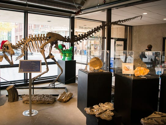 A display of a dinosaur and other fossils stand on