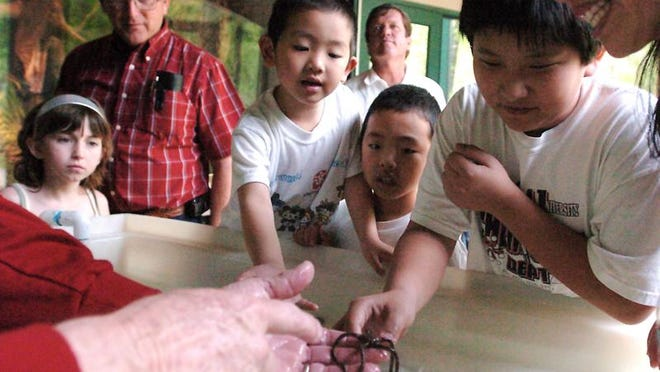 Children and parents get up-close views of a starfish during NatureFEST!