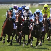The Eighth Pole: The frustrating realities of betting on horse racing