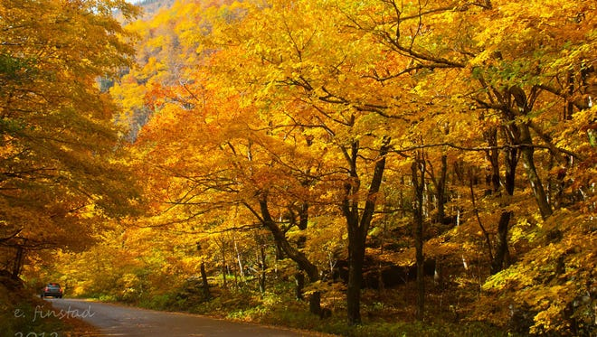 Vermont 108 near Smugglers Notch was named one of the Top 10  beautiful tree tunnels of the world.