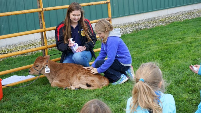 Third grade students learn about dairy calves at a hands-on station taught by Hailey Schoenherr. during Agricultural Exploratory Day at Paulsoncredt Farm owned by Alan and Kelly Paulson.