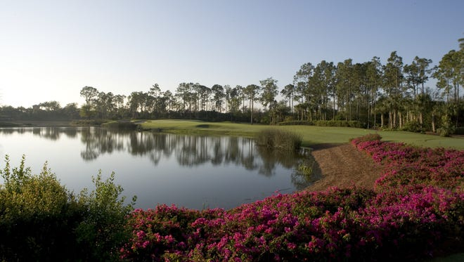 London Bay Homes' Mediterra community on Livingston Road showcases two distinctly different golf courses designed by Tom Fazio.