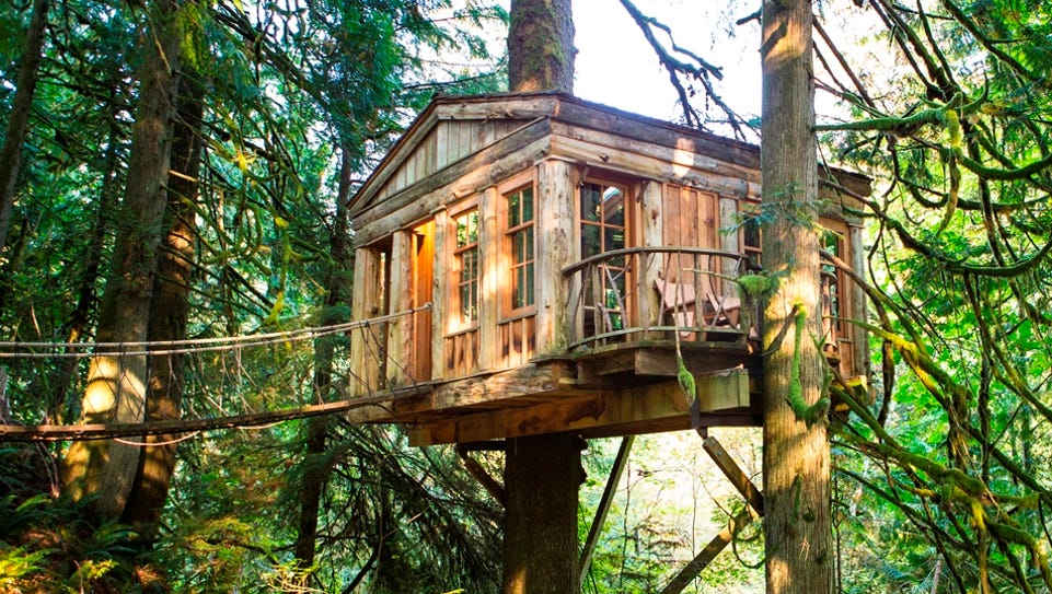 Treehouse builders from around the world come to admire