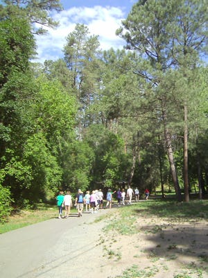 Leafy trees soar over leisure walkers along Ruidoso River Trail, a woodsy secret in the heart of downtown Ruidoso.