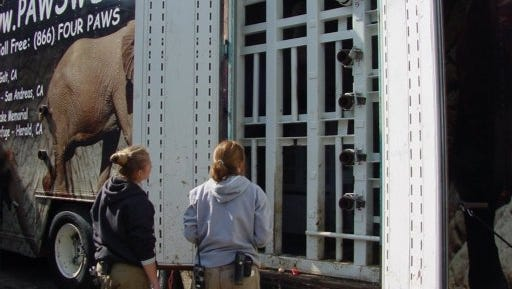 Zoo workers watch as elephants Winky and Wanda walk into the semi-trailer that will transport them to their new home in California.