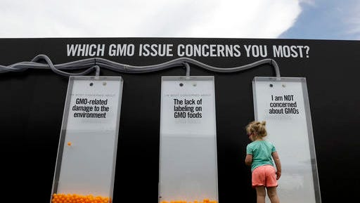 In this Saturday, July 23, 2016, photo, a child views a display that uses orange balls to register people's opinions on GMOs at the Cultivate Festival in Kansas City, Mo. Chipotle's Cultivate festivals encapsulate the food industry's hottest marketing trend: crusading against Big Food. (AP Photo/Charlie Riedel)