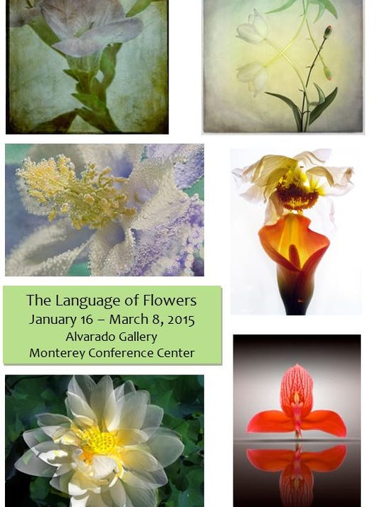 language of flowers.JPG