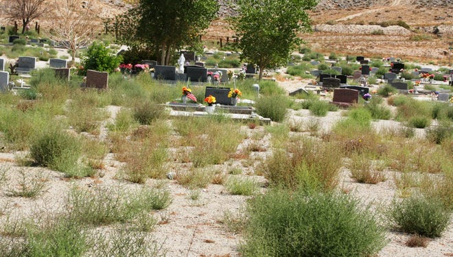 Due to the heavy accumulation of weeds at Valley View Cemetery, as seen here last week, has prompted an effort for a community cleanup day likely Sept. 20 at the local cemetery.
