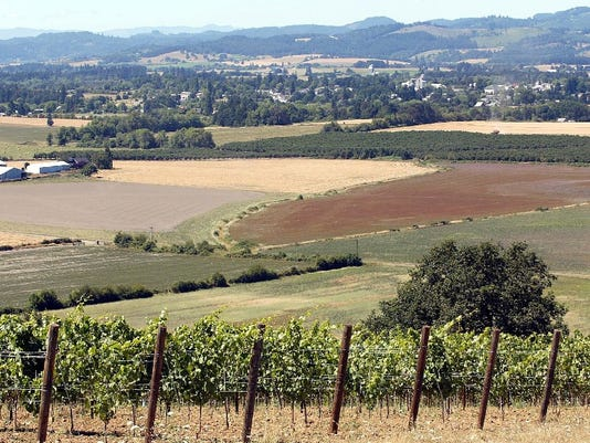 Mid-Willamette Valley is wine country.