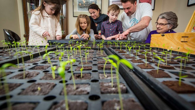 Chad and Michele Ogle-Riccelli, center, with their children - Amelie, 3, left, Autumn, 9, and Sage, 6, and grandmother, Theresa Grace Ausilio Riccelli, 91, right,  Monday Feb. 27, 2017, as they plant their Ausilio Thin Skin Italian pepper seedlings in growing trays at their Des Moines southside home.
