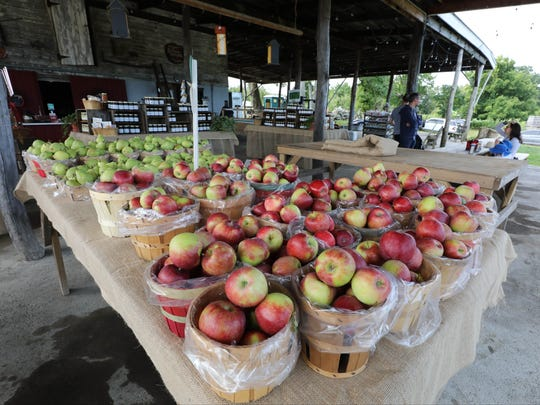 The farm stand at Outhouse Orchards on Hardscrabble Road in North Salem, Sept., 2, 2017.
