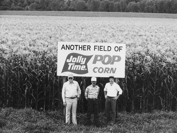 A field of Jolly Time Pop Corn.