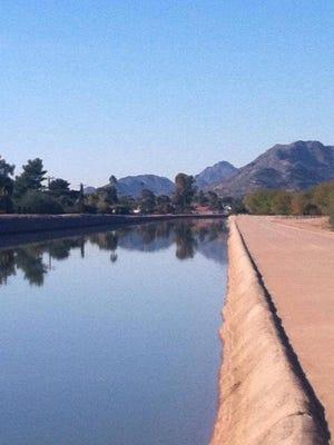 Arizona canal water on a cool August morning, August 22, 2014.