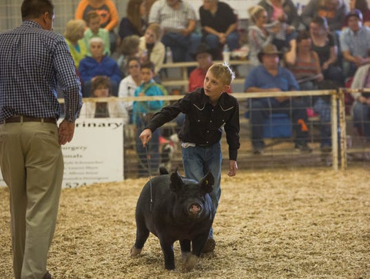 Southern New Mexico State Fair Junior Livestock Auction