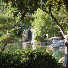 Japanese Friendship Garden's waterfall and lush landscape give a sense of tranquillity. The downtown garden reopens Wednesday, Oct. 1.