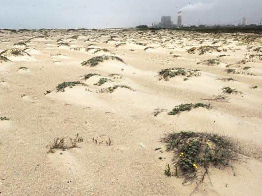 Ormond Beach 8