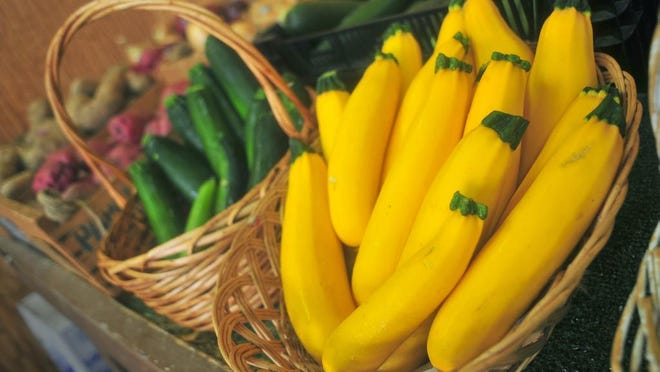 Zucchini and summer squash at Union Hill Farms in Denville.