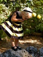 Little bumble bee, Emme Gorgalz, 20-months, is inquisitive while attending the Boo at the Zoo at Naples Zoo & Caribbean Gardens. Donn Brown/Banner Correspondent