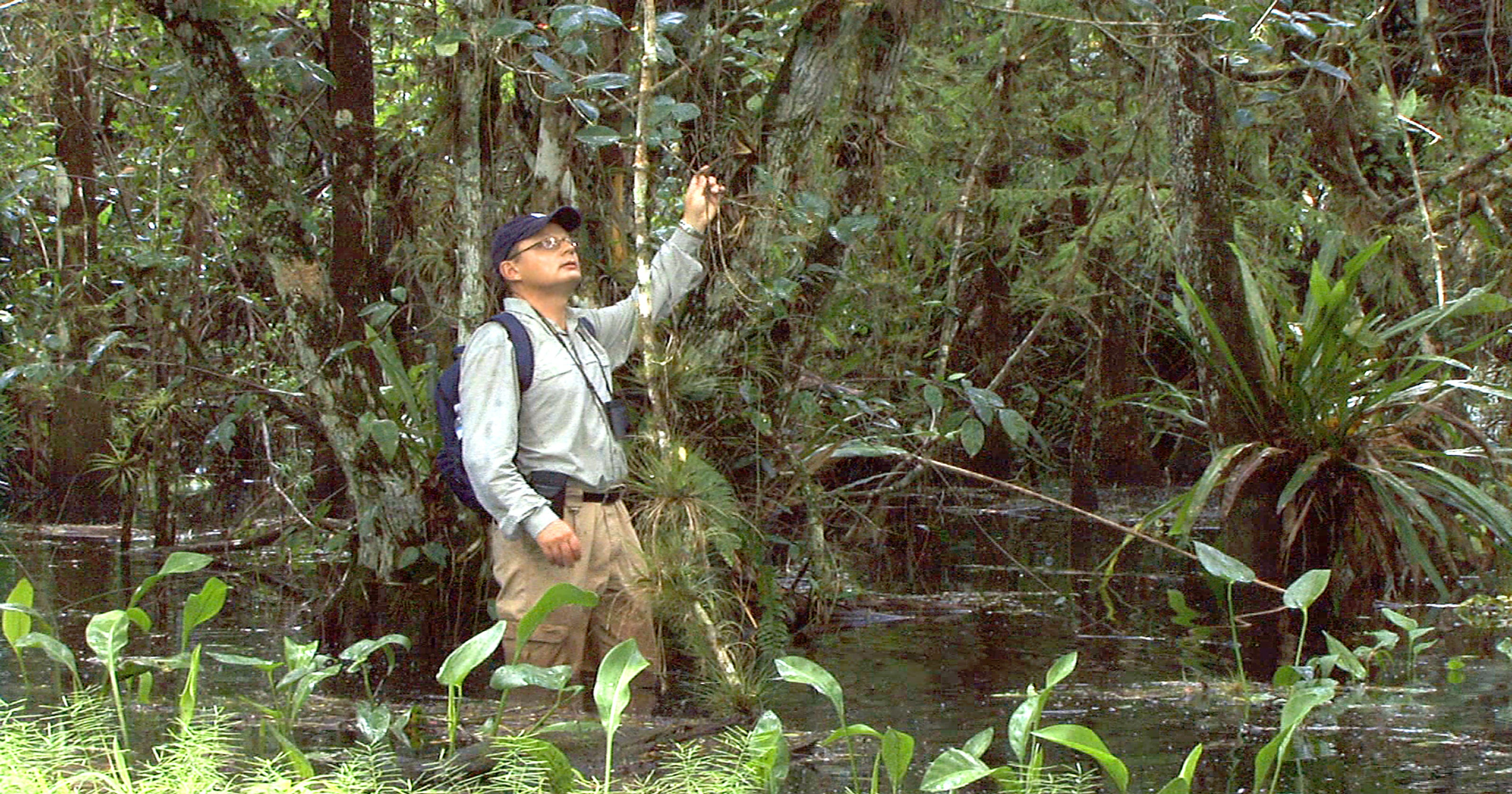 Meet \'Wild Orchid Man\' during documentary screening