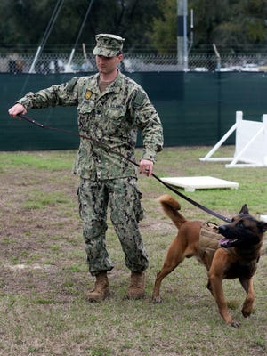 Petty Officer 2nd Class Joe Rummel trains with Figo, a military working dog, on aboard Pensacola Naval Air Station Wednesday, Feb. 14, 2018.