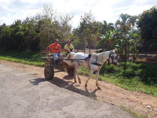 Traveling an hour or two outside of Havana, visitors begin to see a different side of Cuba, where horse-drawn carts still are a common sight.