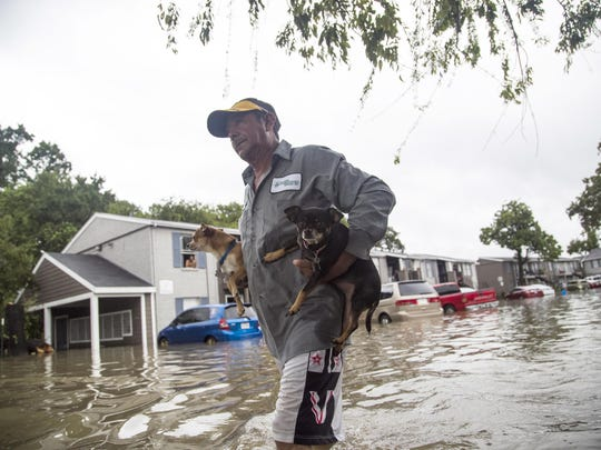 Felipe Grande removes his two dogs from his apartment at Bayou Parc at Oak Forest, Sunday, Aug. 27, 2017, in Houston. The remnants of Hurricane Harvey sent devastating floods pouring into Houston Sunday as rising water chased thousands of people to rooftops or higher ground.
