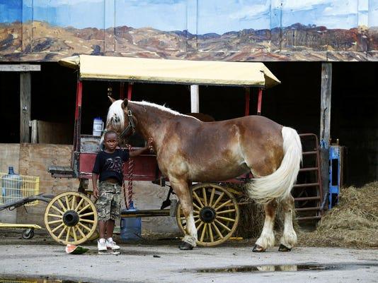 APTOPIX Mennonites Urban Horsemen (2)