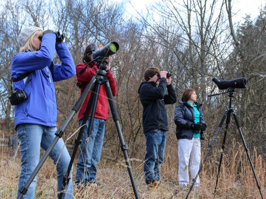 From Left to Right Kim Steininger, M. Hudson, Callum MacLellan and Sarah MacLellan look for Black-capped Chickadee Saturday Dec. 27, 2014 at Valley Garden Park in Wilmington, DE.
