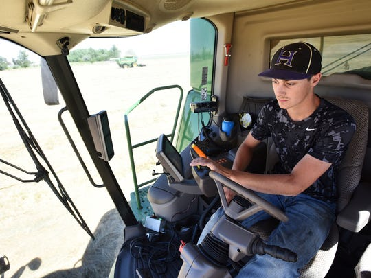 Hermiston high school senior Trevor Horn, of Hermiston, Ore., drives a combine while harvesting Kentucky blue grass at Golden Valley Farms outside of Stanfield, Ore.