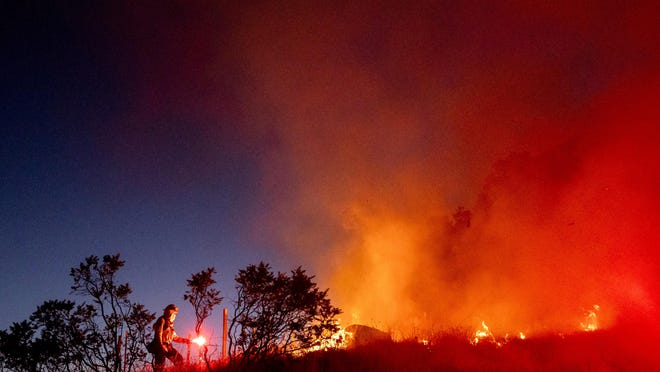 Firefighter Daniel Abarado lights a backfire while working to contain the Crews Fire from near Gilroy, Calif., on Sunday, July 5, 2020.