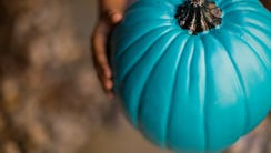 To participate in the Teal Pumpkin Project, just put