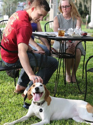 """Joshua Weeks scratches the head of his dog """"Tess"""" at the Yappy Hour event at The Front Porch restaurant in 2013.  The Leon County Commission will vote on regulations for allowing dogs into outside areas at restaurants at an April commission meeting."""