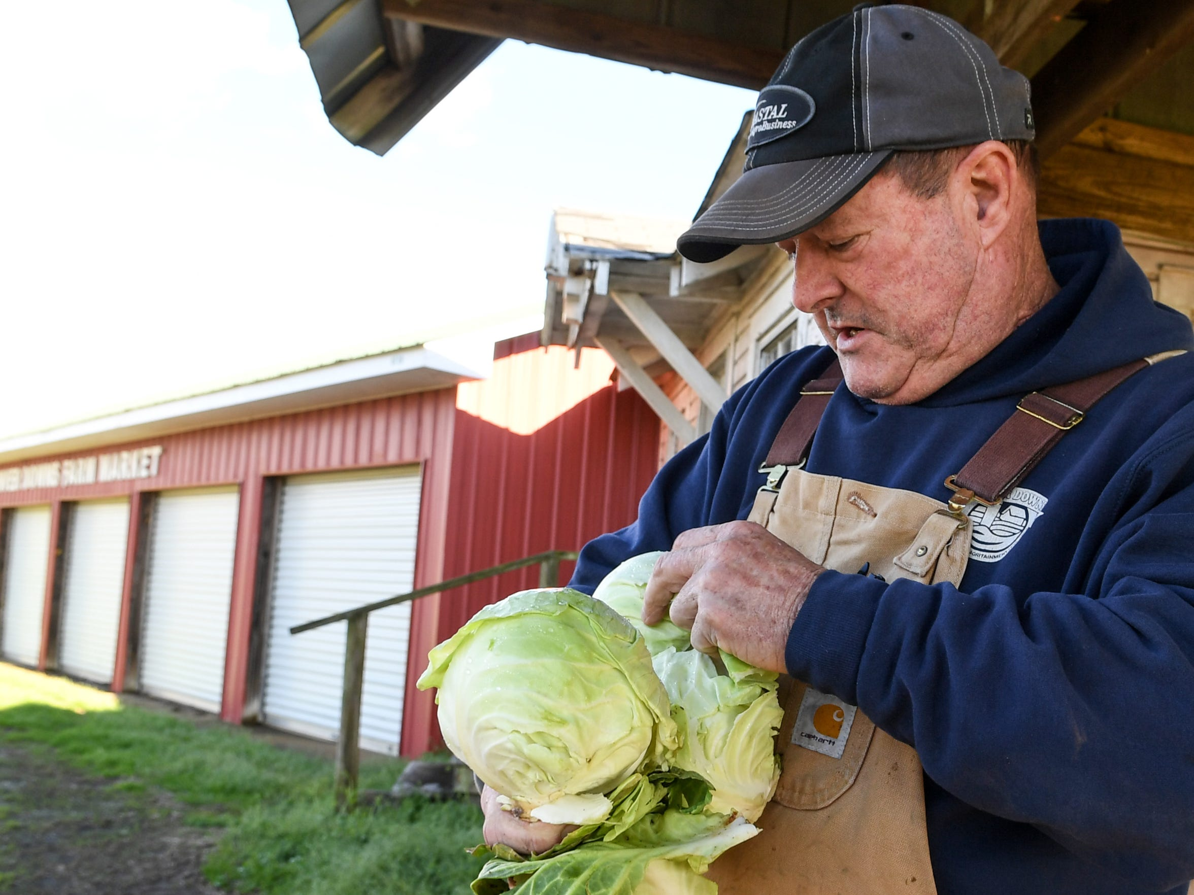 Tom Garrison holds cabbage grown at Denver Downs farm in Anderson.