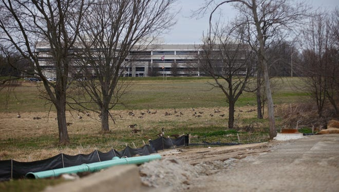 Geese gather on the field eyed for Wilmington University's new campus on Concord Pike.