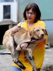 Annie Hornish, Humane Society state director for Connecticut,