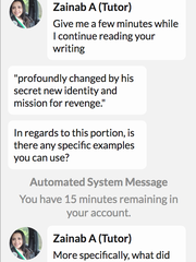 Tutor offered up a shared screen and direct messaging