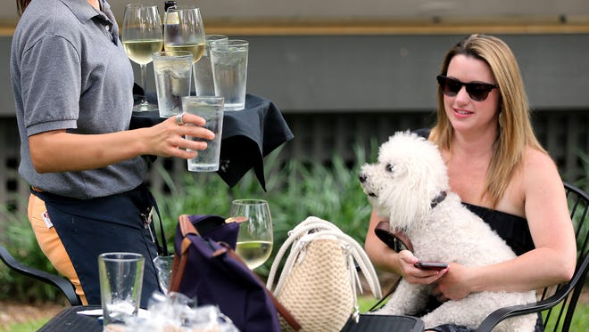 "A waitress delivers water to Amanda Chandler and her pup Chloe at the Yappy Hour event at The Front Porch restaurant in 2013. The Leon County Commission adopted ""doggie dining"" standards Tuesday night that regulates restaurants allowing dogs into outdoor seating areas at Leon County restaurants."