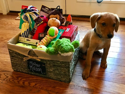 636450453987661222-Mr.-Muddy-toy-basket.jpg