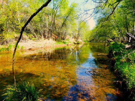 The Kisva Trail follows the course of Oak Creek as