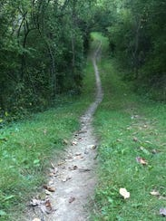 There are a variety of trails that lead runners, hikers