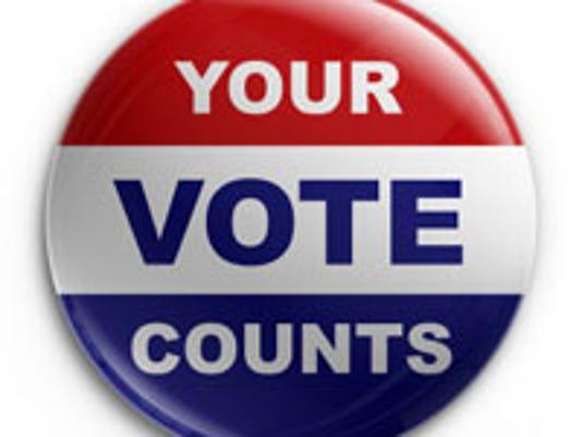 voter2.jpg
