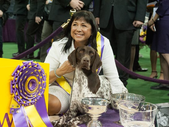 CJ, a German Short Haired Pointer, wins Best in Show