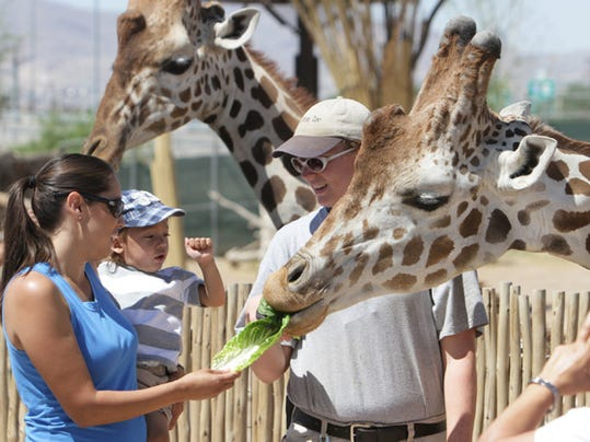 Debbie Chavez held her son Paul Chavez, 2, as they fed giraffes in April at the El Paso Zoo.