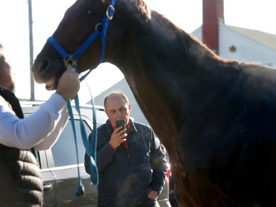 Antoino Sano, trainer of Kentucky Derby hopeful Gunnevera spoke on the phone while the horse was being bathed. April 125, 2017.
