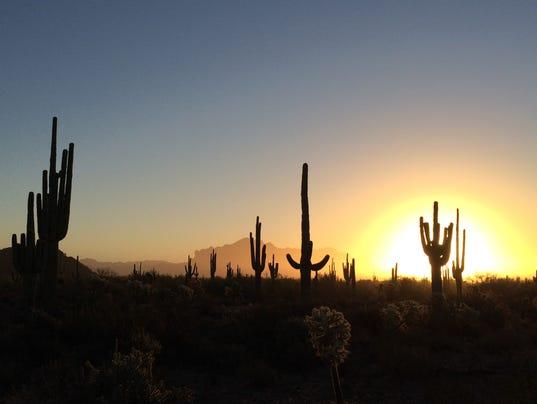 Desert Sunrise at Usery Park